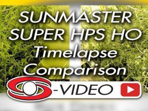 Sunmaster SUPER HPS HO vs 1000W HPS
